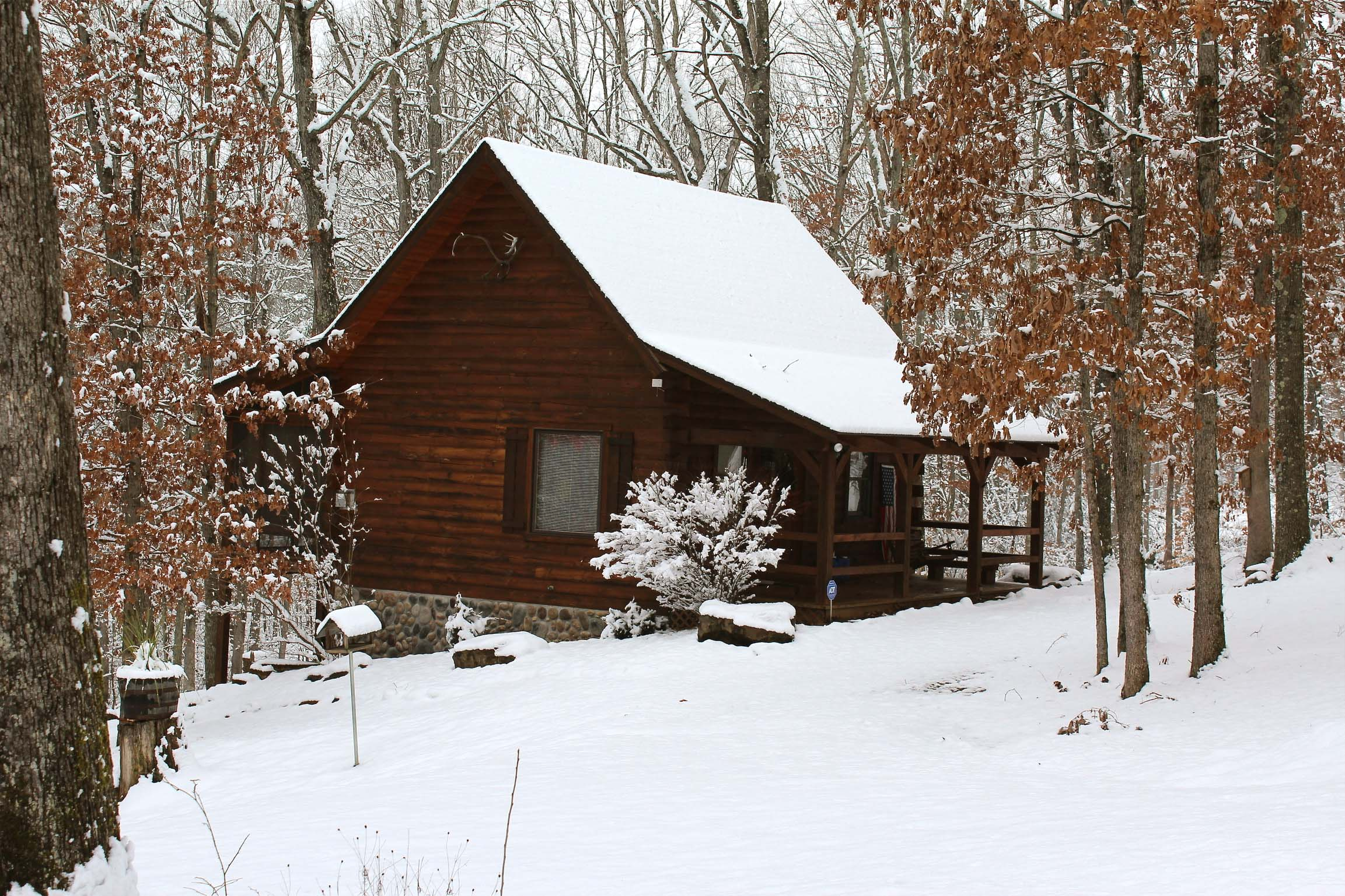 The Cardinal Cabin - The change of season accentuates the beauty of this scenic and serene landscape.