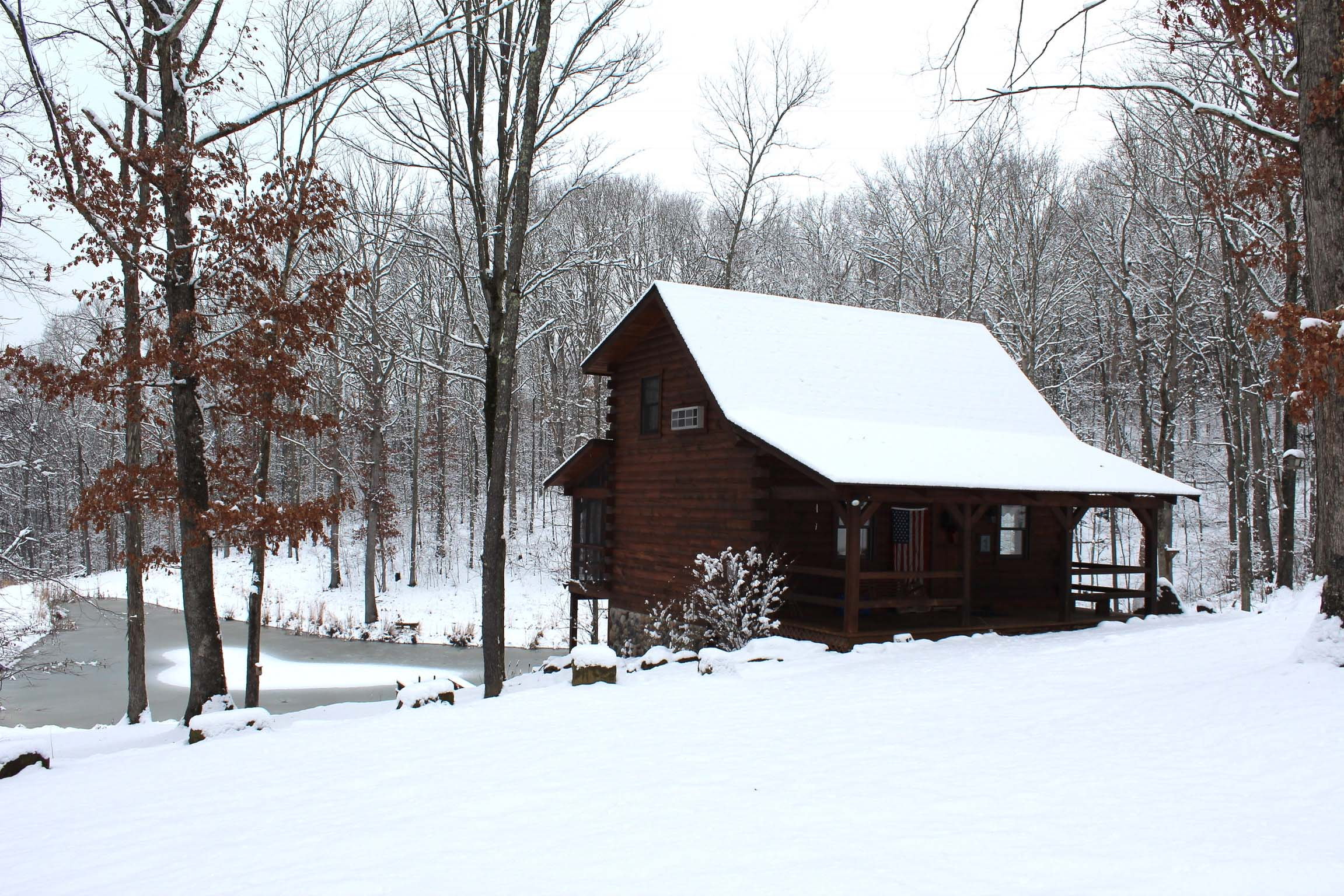 The Blue Jay Cabin - The change of season accentuates the beauty of this scenic and serene landscape.