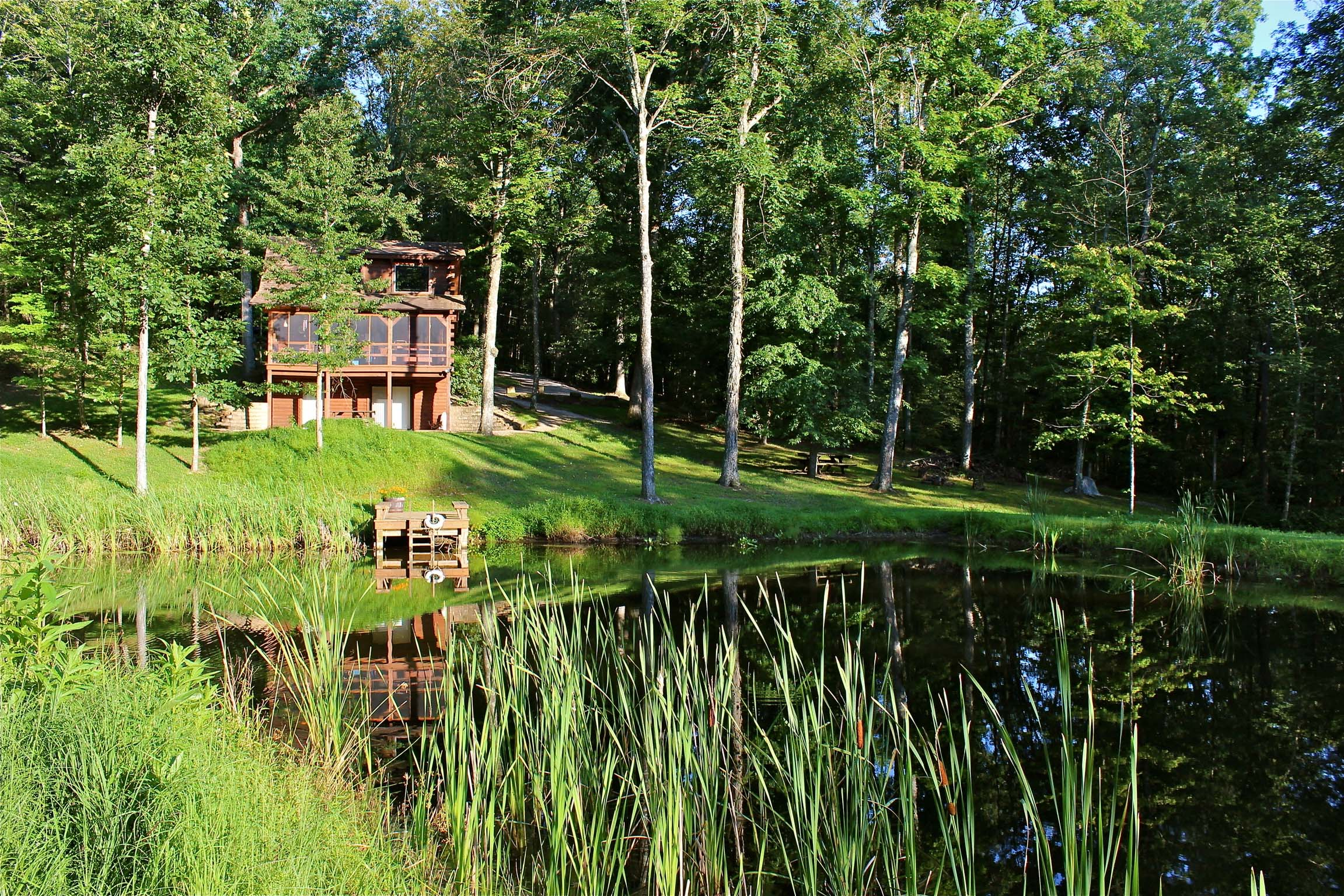The Blue Jay Cabin - The stunning Blue Jay log cabin also has a stocked pond.  Catch and release fish or just enjoy sights and sounds of this beautiful water feature from the back screened-in deck.  A nearby fire ring is stock with free firewood for your convenience.