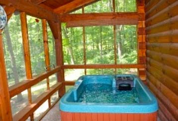 The Cardinal Cabin - Enjoy the hot tub, gas grill, and table and chairs on the screened back deck. A great place to to soak the stress away or enjoy a cup of coffee in the morning.