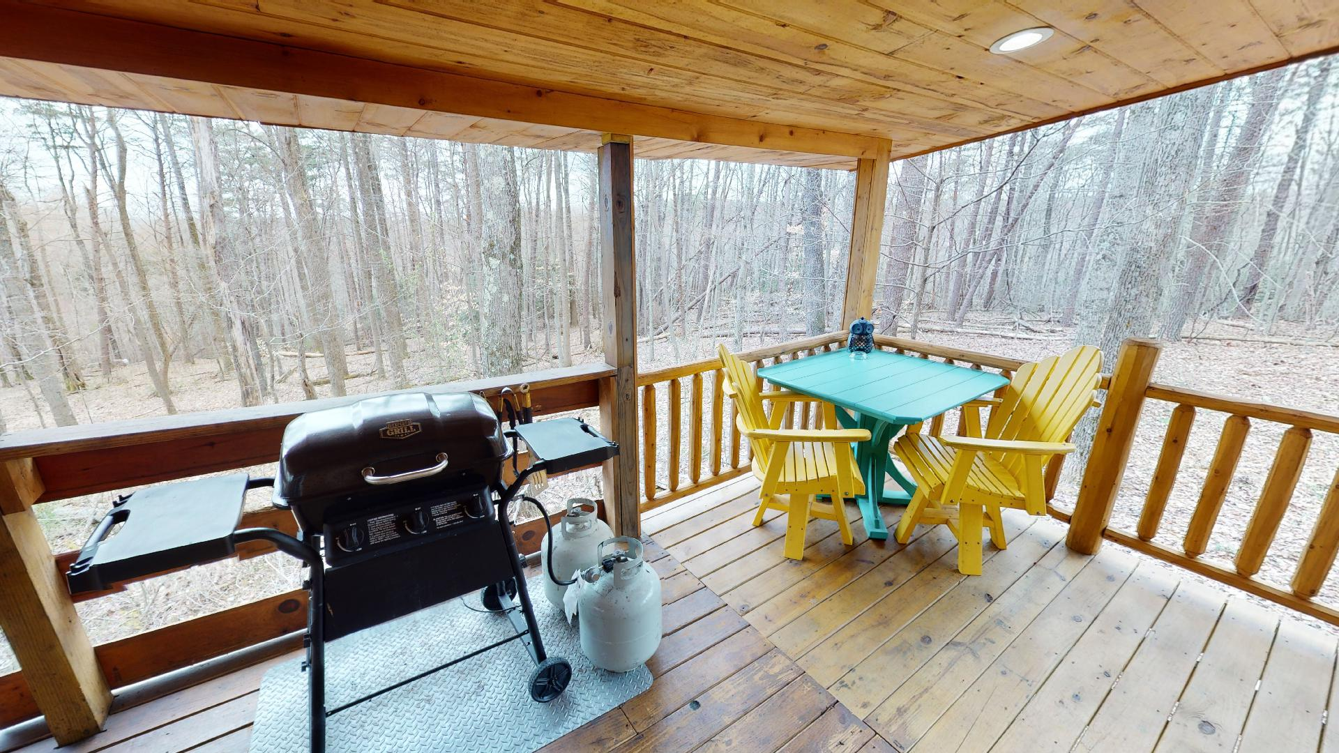 Photo 663_9211.jpg - Private outdoor seating and dining. Propane grill.