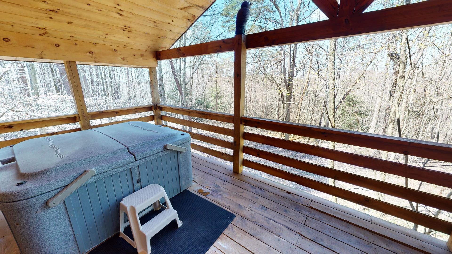 Photo 663_9223.jpg - Two-person hot tub situated on the private back deck.