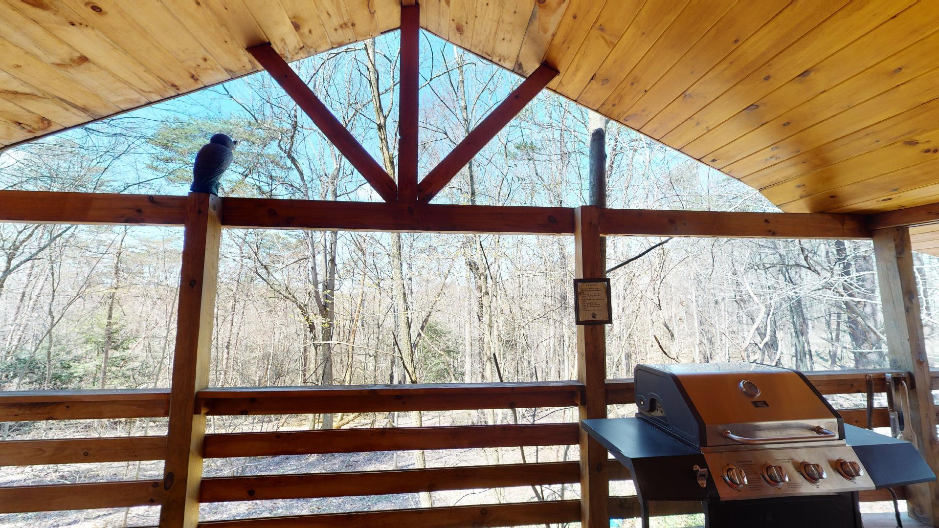 The Overlook - Covered porch and propane grill