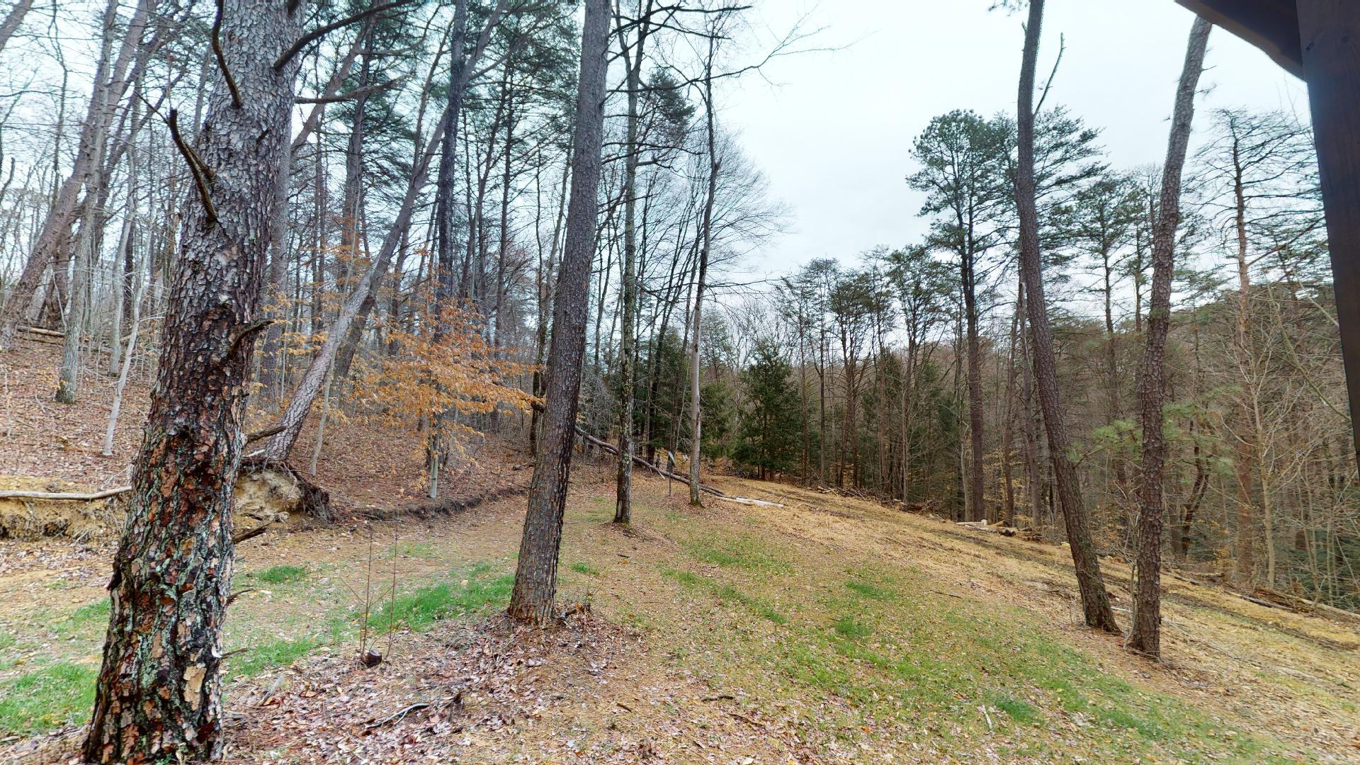Trail Ridge View - View from Trail Ridge